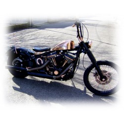 Harley Davidson softail 1450 Rame